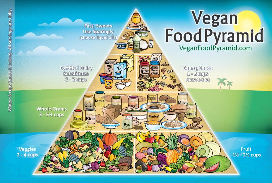 Piramide alimentare vegan