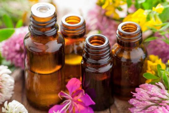 Le vibrazioni energetiche dei fiori di bach ci curano