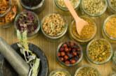 La fitoterapia agisce sulla orgine della malattia, il farmaco sui sintomi