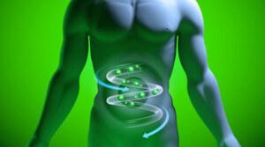 Come possiamo combattere i molestatori del nostro intestino?